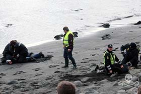 The Murder of the Whales, Courtesy of the Royal Danish Navy
